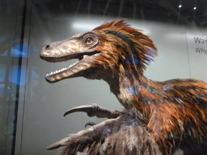 And they get extra points for having a feathered Deinonychus model!