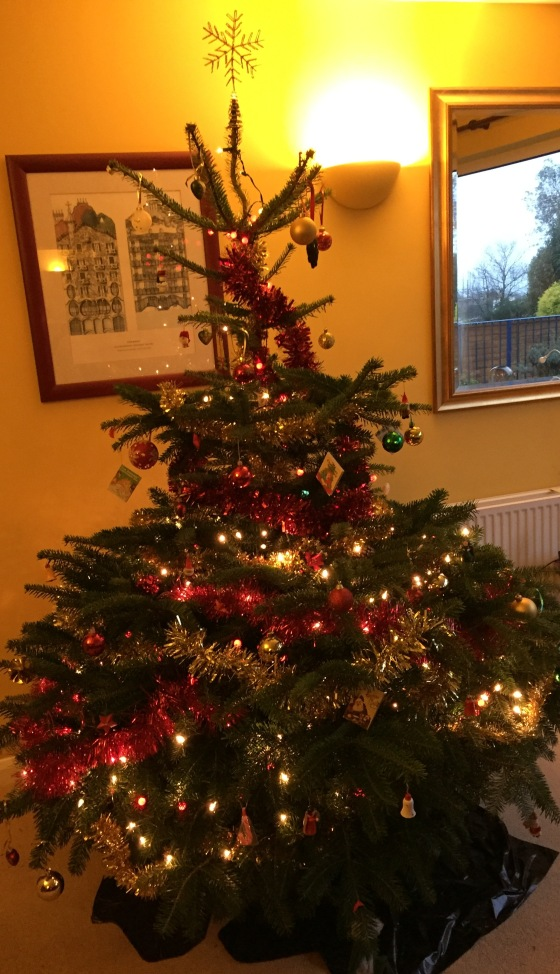 Decorating the tree is one of my favourite parts of the season - I wish it could stay up until March!