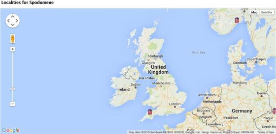 The location of Spodumene mineral in the UK according to the MinDat Website.