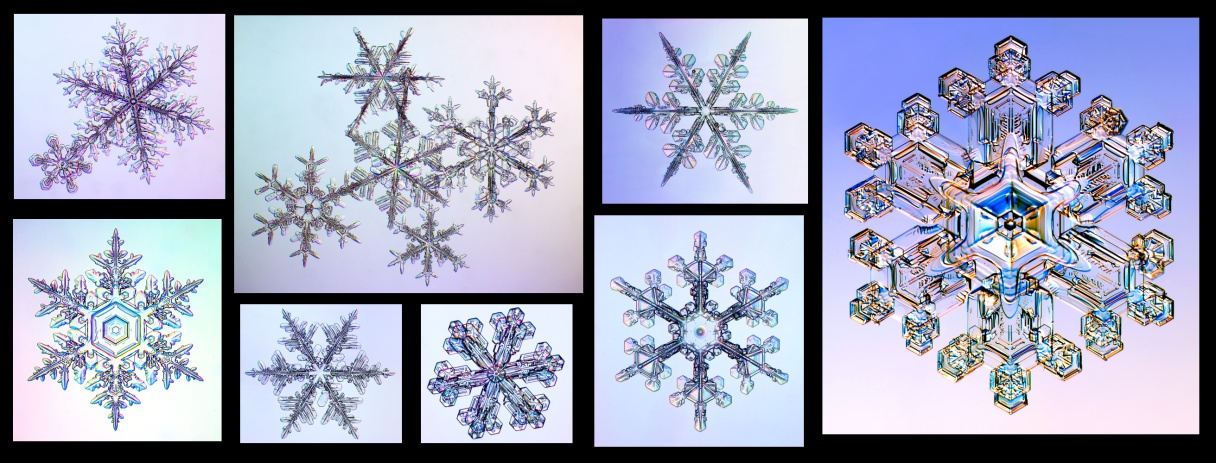 Absolutey gorgeous photos of the stellar dendrites form of ice, please visit Kenneth Libbrecht's webpage form more spectacular imagery.