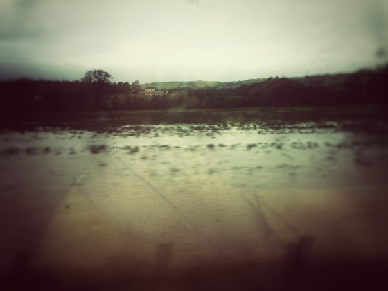 A photo (taken from the train!) of flooded fields in the Westcountry.